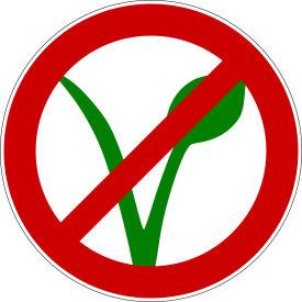 Schulkinder dürfen nicht vegan sein??