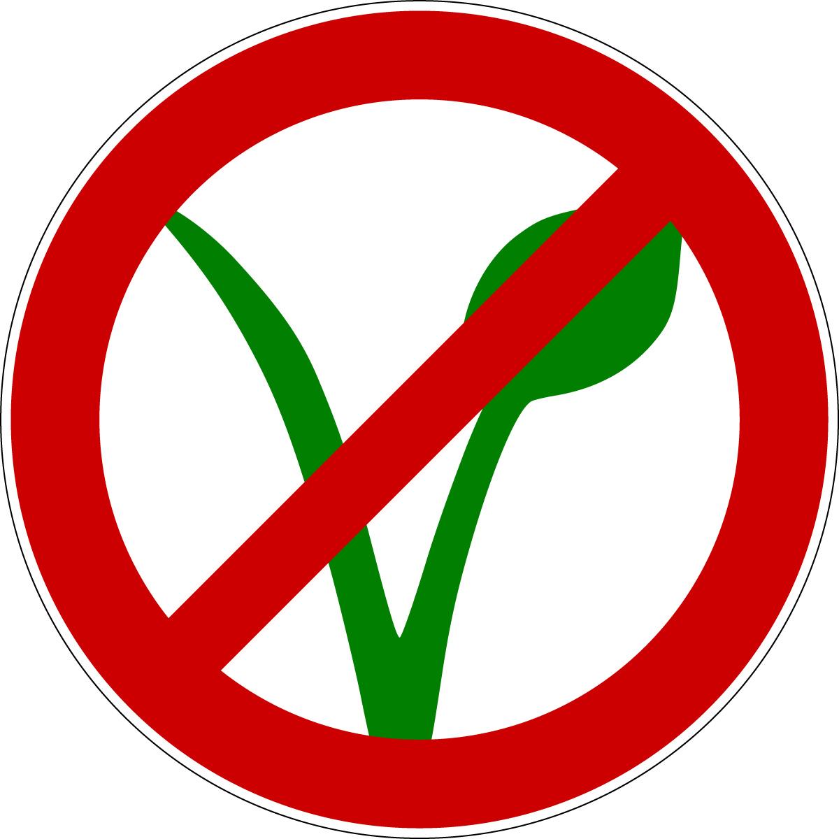 Bescheid: Kein veganes Schulessen! | Vegane Kinder wollen essen